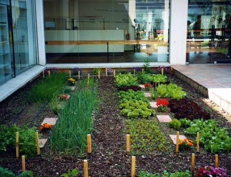 Huerta organica parte i ideas para jardines y decoraci n for Jardines urbanos en terrazas