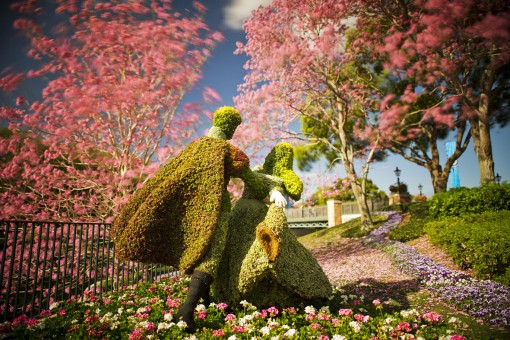pareja arbusto