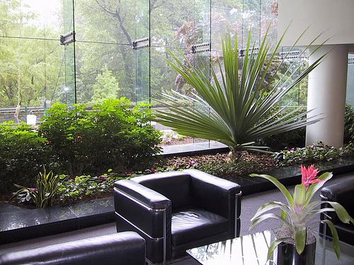 Ideas para jardines y decoraci n for Jardines pequenos para oficina