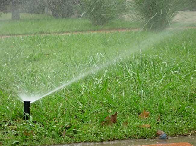 ahorrar agua riego