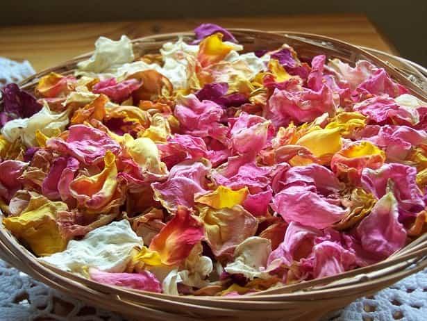 trucos secar flores