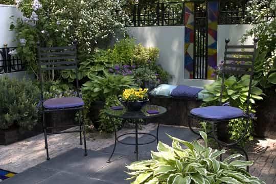 Cuidados Para Las Plantas De Terrazas Ideas Para Jardines