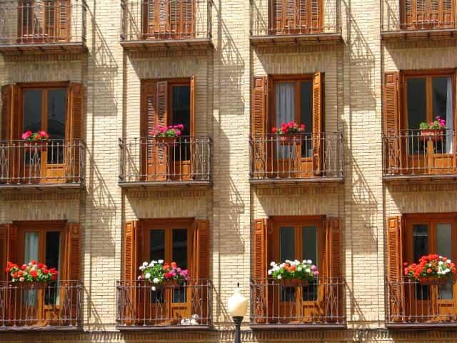 flores ventanas