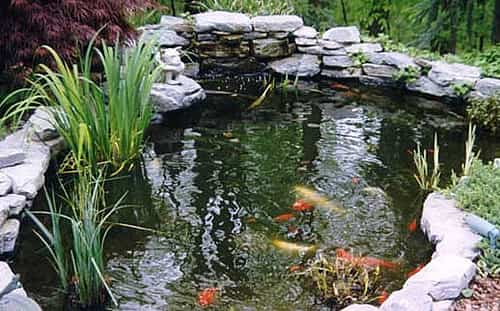 C mo hacer un estanque para peces ideas para jardines y for Estanques artificiales
