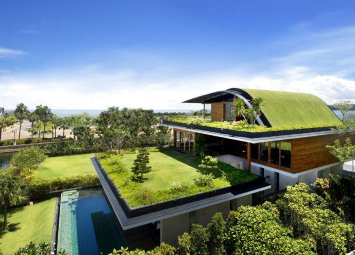 jardin tejado