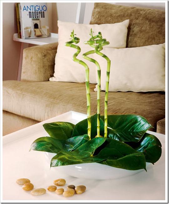Decora la oficina con plantas naturales ideas para for Decoracion de oficinas con plantas