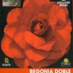 Bulbo Begonia doble roja oscura
