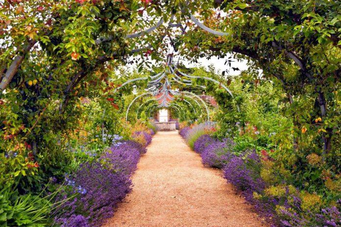 02 caminos en el jardín