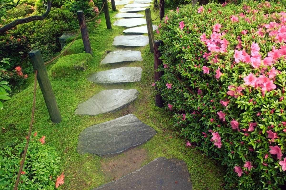 caminos en el jardín