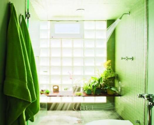 Decorar Un Baño De Color Verde:baño verde con plantas