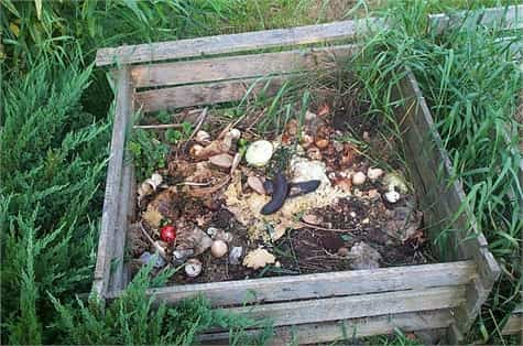 compost(1)