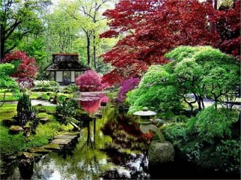 jardin japones1