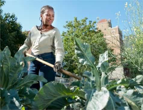 jardineria primavera1