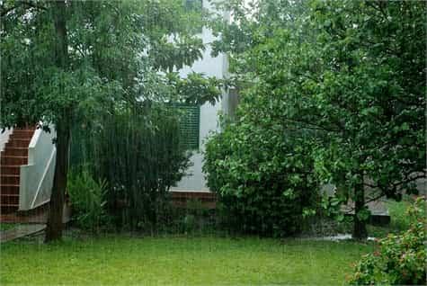 lluvia jardin