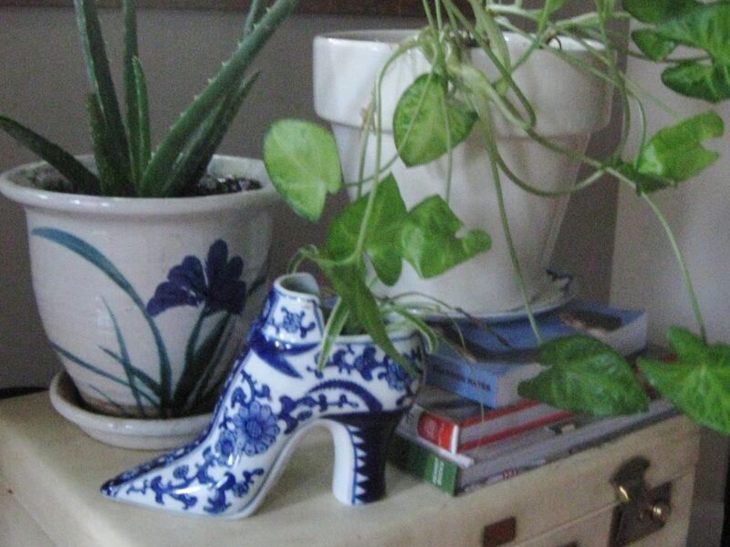 maletas y macetas con plantas