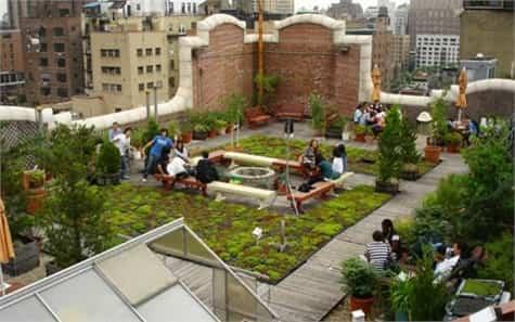 jardin azotea