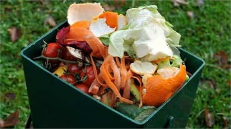 desechos compost