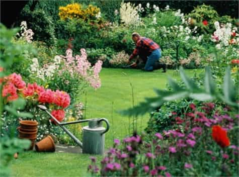 jardineria salud1