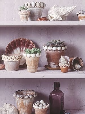 Decorar macetas con conchas ideas para jardines y decoraci n for Caracoles de jardin que comen