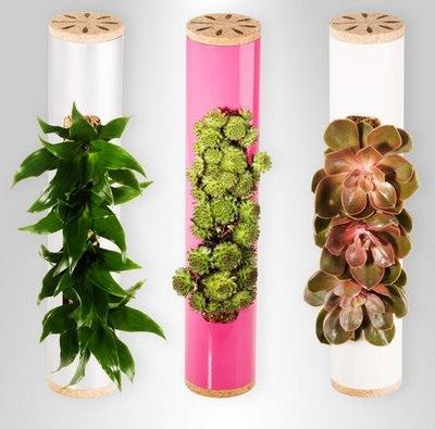 Flowerbox para decorar las paredes con plantas ideas - Ideas para decorar paredes con plantas ...