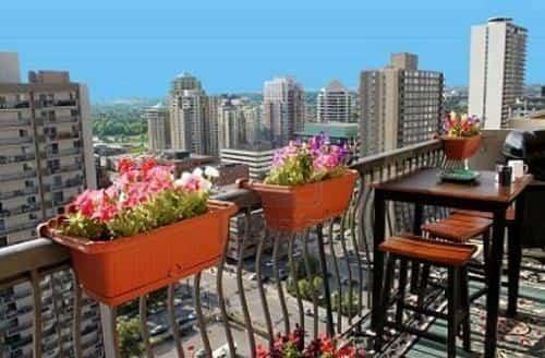 Jardineria balcones