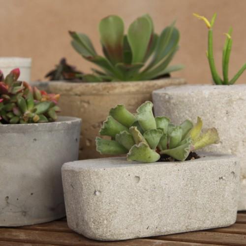 Maceta de cemento ideas para jardines y decoraci n - Maceta de cemento ...