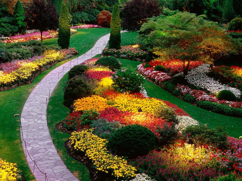 paisajismo del jardín
