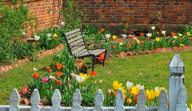 Jardín cuidados