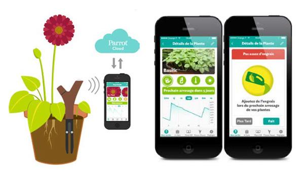 Jardinería y cultivo ecológico