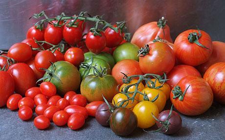 tipos de tomates diferentes