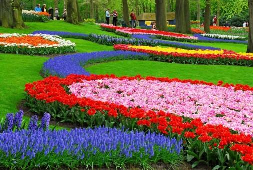 decorar con tulipanes