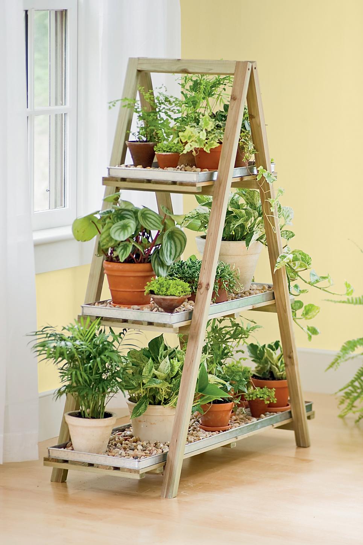 escalera con plantas