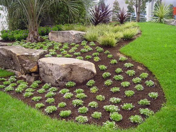 Construye un jardín en pocos pasos