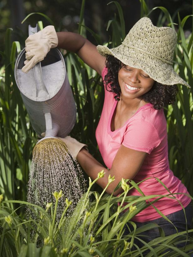 como cuidar el jardin