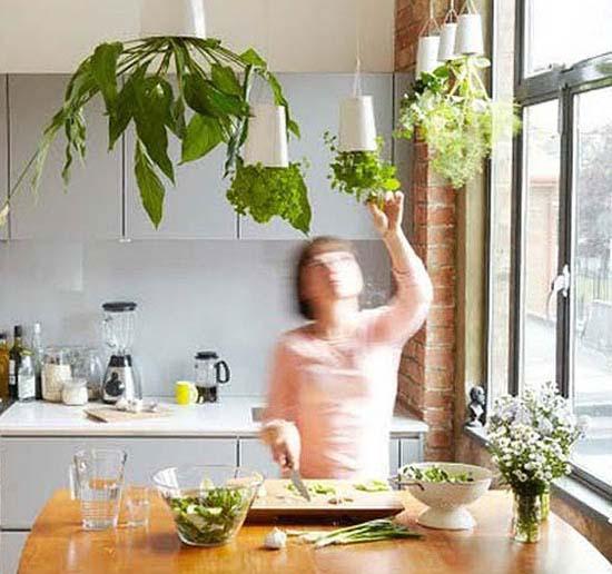 Ideas para decorar con plantas aromáticas