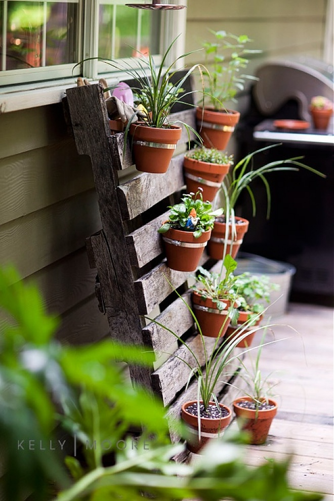 jardin vertical con un palet