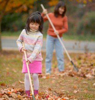 como limpiar el jardin