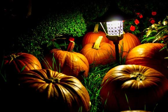 Decora tu jardin para Halloween