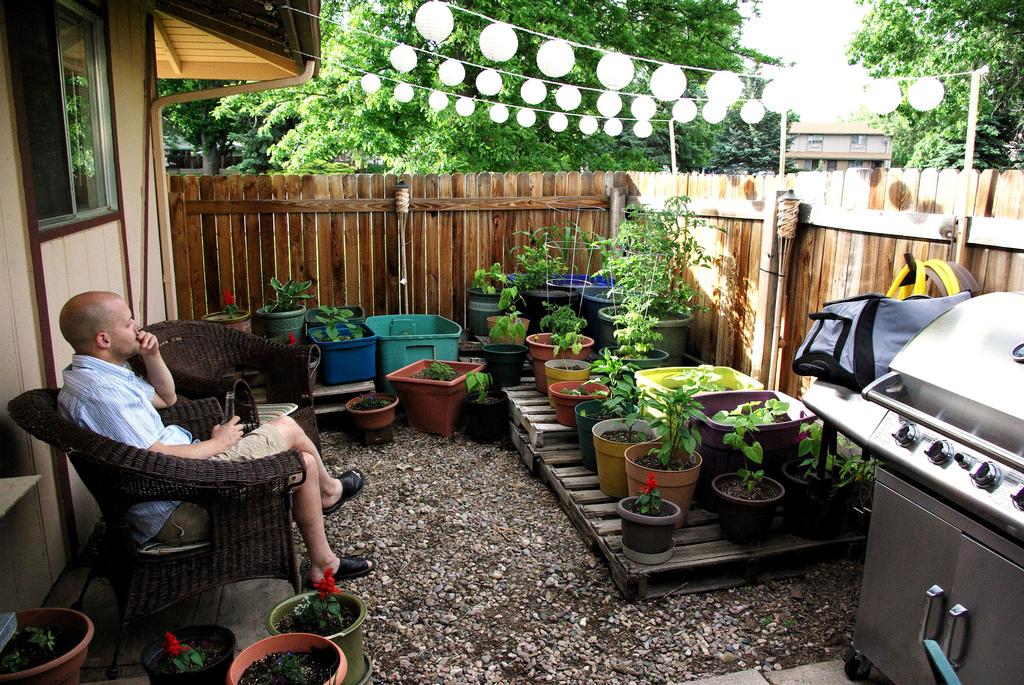 fotos jardins modernos:Decoracion De Jardines Para Navidad