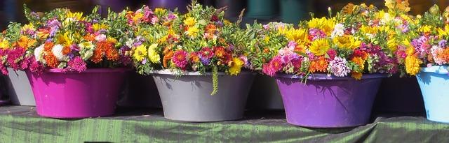 Formas baratas de decorar el jardín