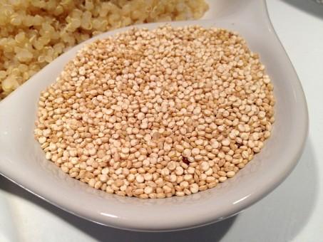 Quinoa en el jardín