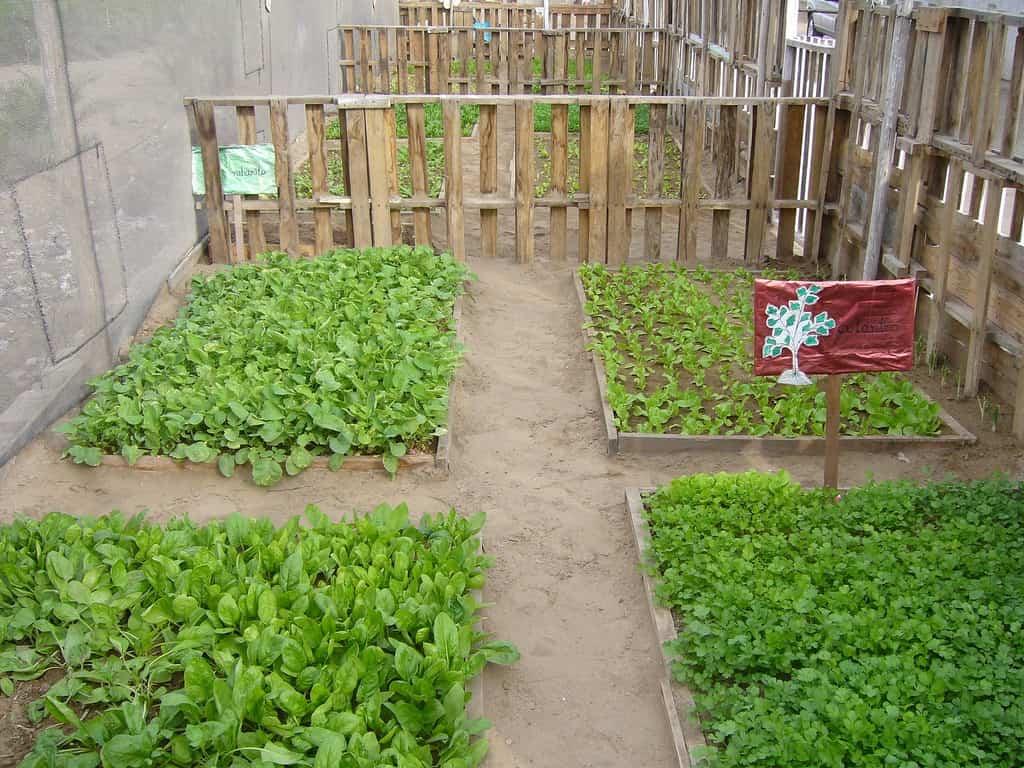 jardines sostenibles que quidan al medio ambiente
