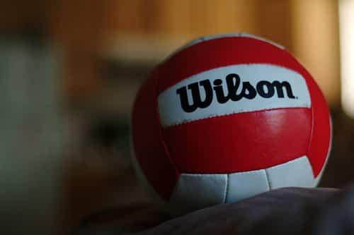 Balones como maceteros