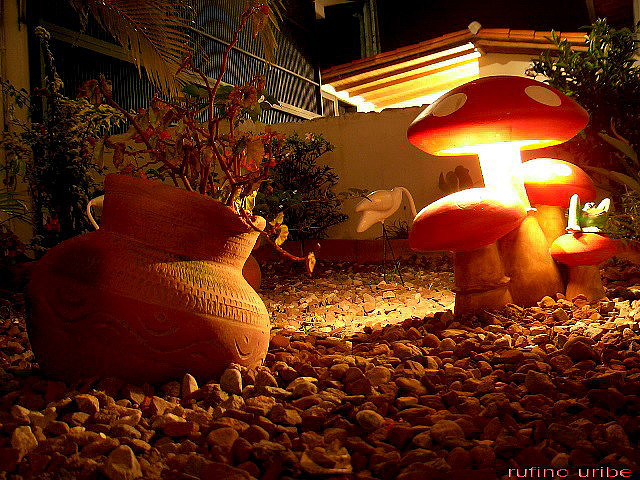 Iluminar el jardín