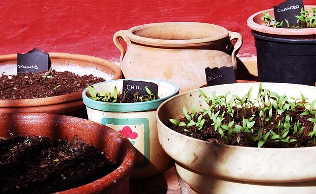 Plantas artificiales aromáticas