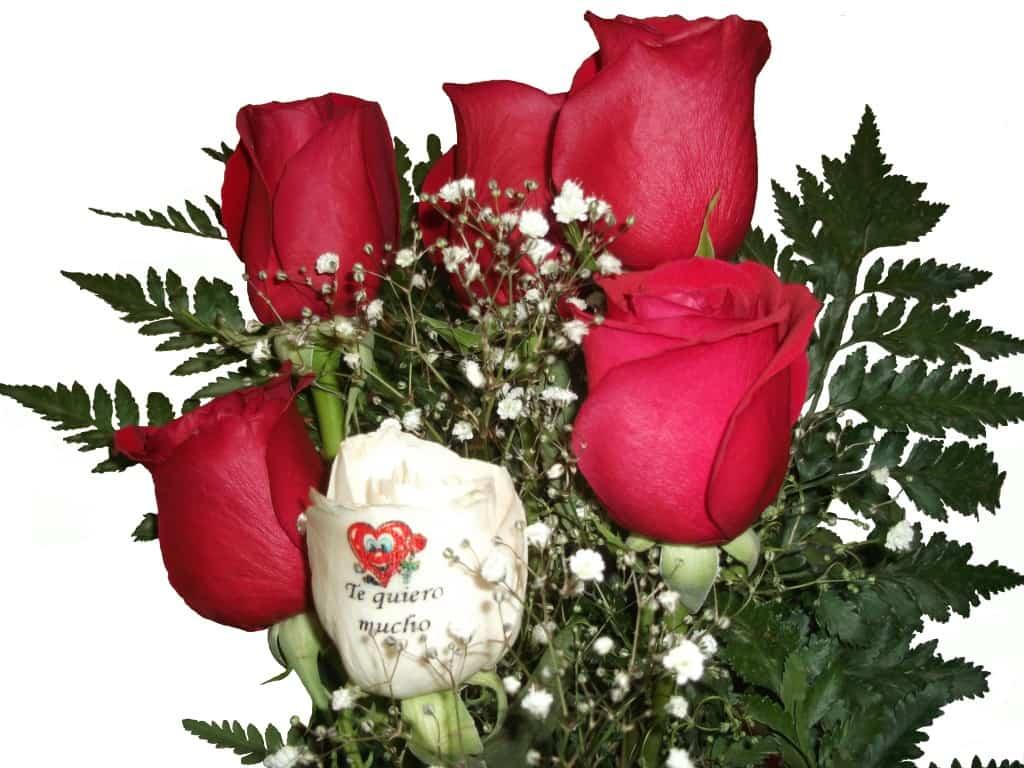 Ramos de rosas