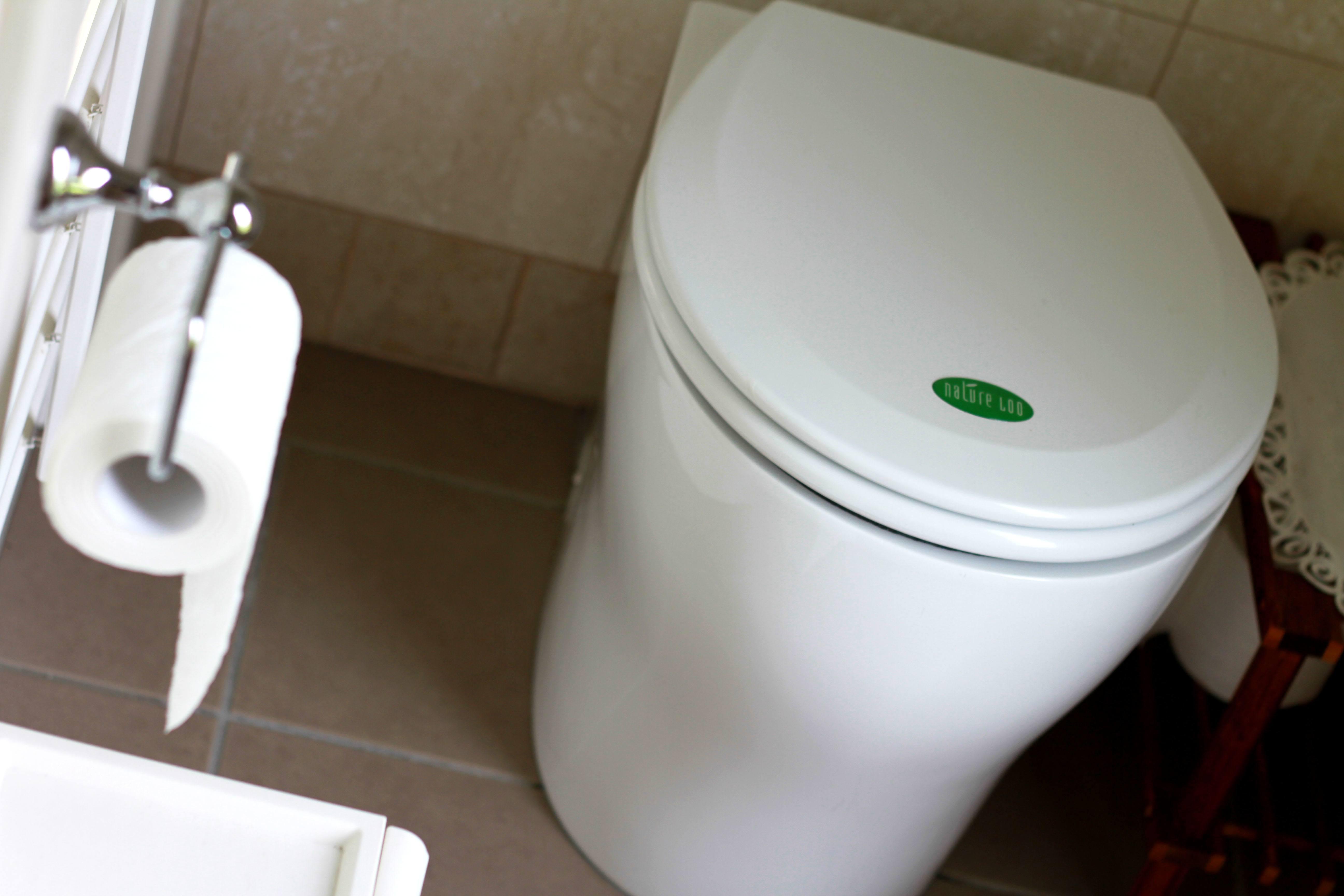 Decorar el baño con plantas 4