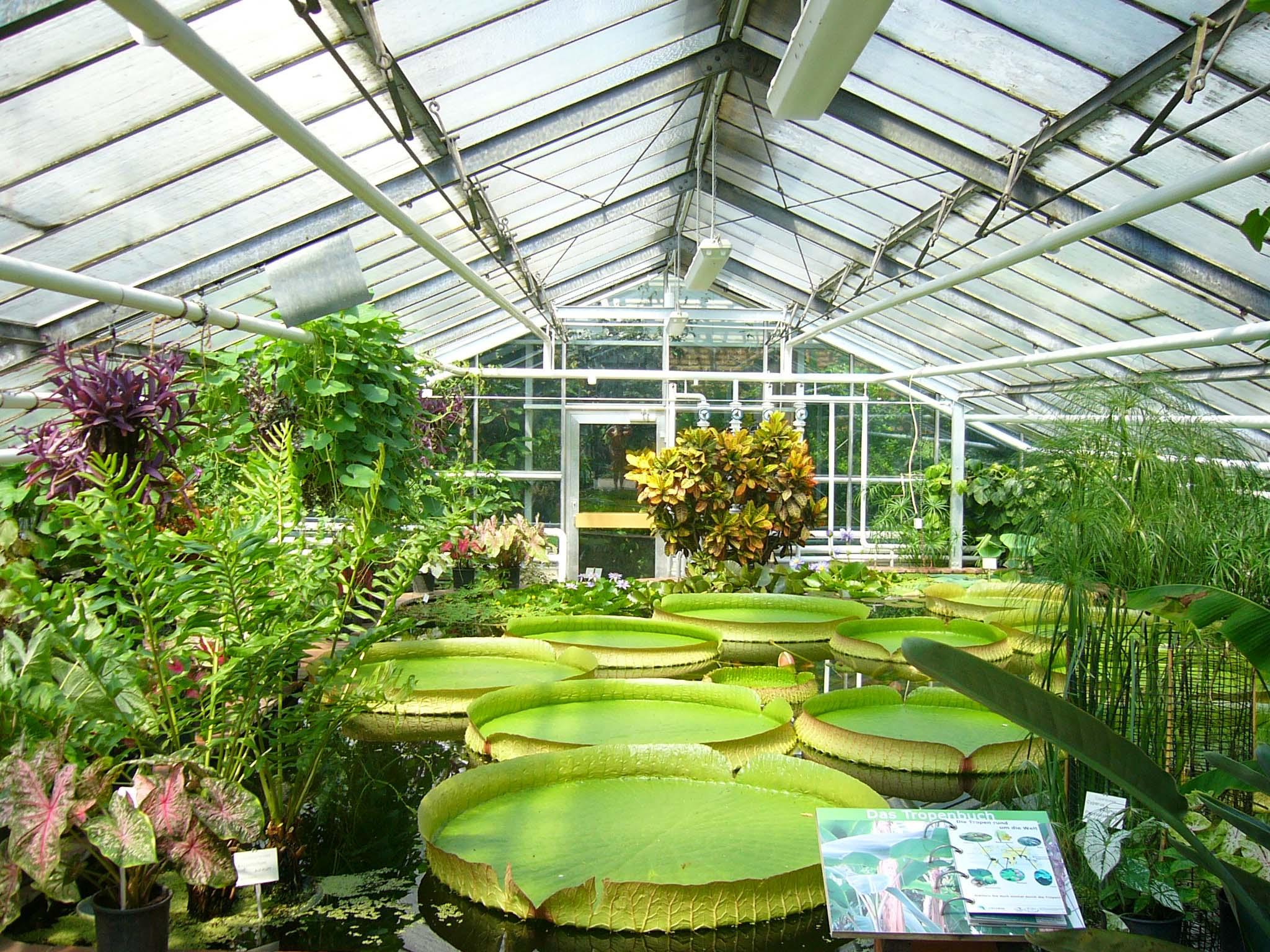 Jardines botánicos turísticos 5