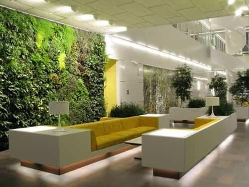 Los jardines verticales de interior 3