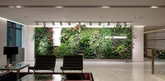 Los jardines verticales de interior 1